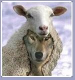 Lobo con piel de oveja
