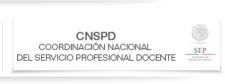 Página del CNSPD