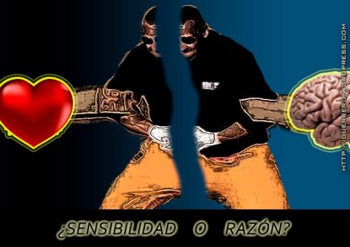 SENSIBILIDAD O RAZON