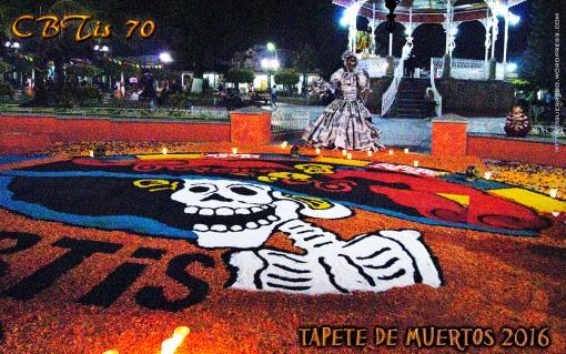 tapete-de-muertos-2016